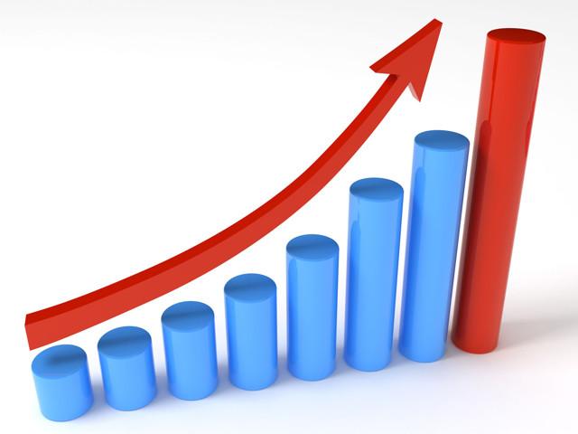 Что такое и как проходят торги по банкротству, виды и этапы публичных торгов и аукционов